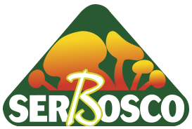 logo_SerBosco_07